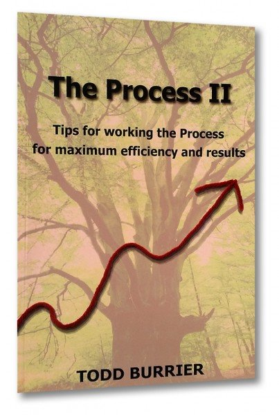The Process II (englisch)